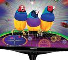 Монитор 3D Viewsonic VX2268wm + Nvidia 3D Vision, бу