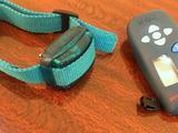 Электронный ошейник для маленьких собак D-control